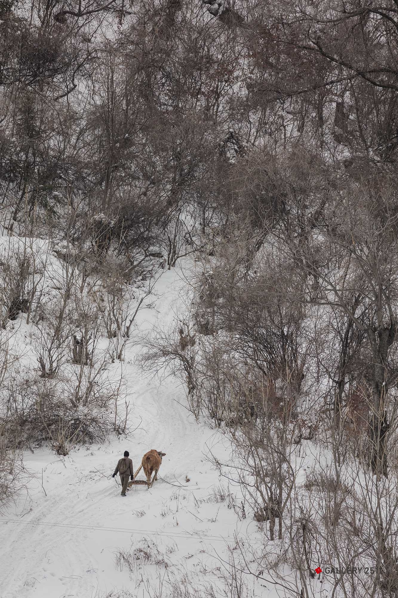 20.作業のため冬の山に入る人 2018/03